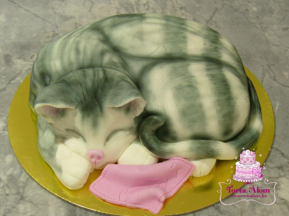cicás torta képek Tortaálom | Formatorta | Cicás torta cicás torta képek